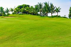 Green golf course royalty free stock image