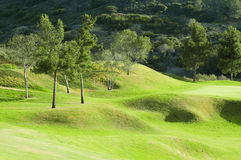 Green golf field on a hill Stock Photo