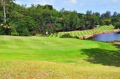 Green golf field. Wavy green golf field on the tropical island of Praslin, Seychelles Royalty Free Stock Photo