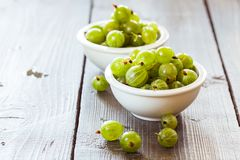 Green gooseberries in a aluminum bowl Royalty Free Stock Images