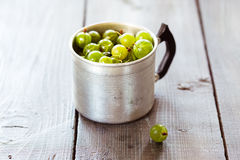 Green gooseberries in a aluminum cup Royalty Free Stock Image