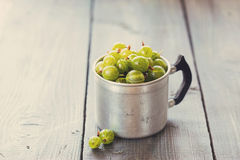 Green gooseberries in a aluminum cup Stock Images