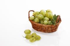 Green gooseberries in basket Stock Image