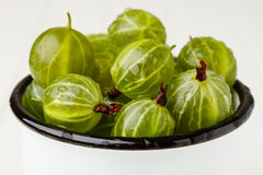 Green gooseberries in an enamel mug Royalty Free Stock Photography