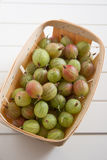 Green gooseberries Stock Images