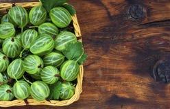 Green gooseberries in a wicker basket Stock Photography
