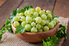 Green gooseberries Royalty Free Stock Photos