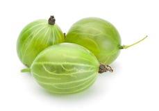 Green gooseberry. Fruit closeup isolated on white background royalty free stock photos