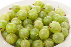 Green gooseberry Stock Image