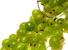 Green gooseberry. Green berries of gooseberry in drops of water. Summer stock photo