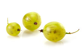 Green gooseberry fruit closeup Stock Photography