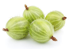 Green gooseberry fruit on white Stock Image