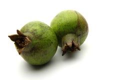 Green gooseberry fruit on white Stock Photos