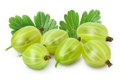 Green gooseberry isolated on white background with clipping path and full depth of field