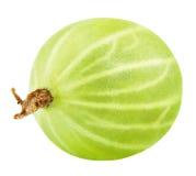 Green gooseberry on white Royalty Free Stock Photos