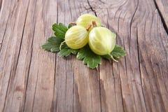 Green gooseberry Royalty Free Stock Photos