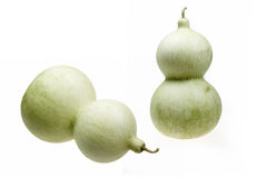 Green gourd Stock Photos