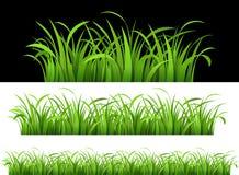 Green gräs vektor illustrationer