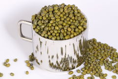 Green gram beans. Green mung beans in a raw state Stock Photography