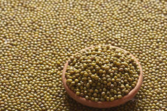Green gram or Moong Dal. Green gram whole are generally eaten either whole or as sprouts Royalty Free Stock Photo