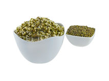 Green Gram Sprouts. Sprouts of green grams in the foreground bowl and raw green grams in the second bowl Royalty Free Stock Image