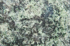 Green granite Stock Photography