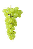 Green grape Royalty Free Stock Photography