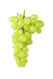 Green grape Royalty Free Stock Images