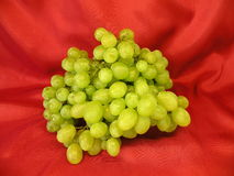 Green grape Stock Image