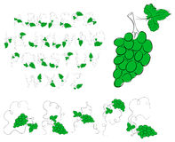 Green grape alphabet Stock Images