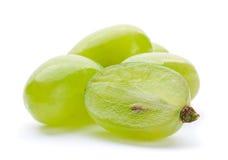 Green grape berry Royalty Free Stock Photos