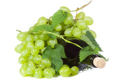 Green grape with bottle of wine Stock Photography