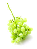 Green grape bunch isolated on white Stock Images