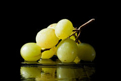 Green Grape Bunch. A small bunch of green grapes sitting in water with reflection Stock Image