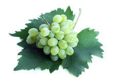 Green grape cluster on leaf Royalty Free Stock Photos