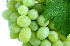 Green grape cluster with leaves Royalty Free Stock Image