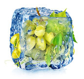 Green grape in ice cube Royalty Free Stock Images