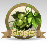 Green grape label Stock Images
