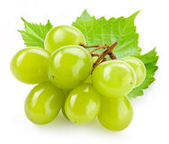 Green grape with leaf isolated on white Royalty Free Stock Photo