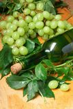 Green grape with leaves Royalty Free Stock Images