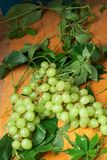 Green grape with leaves Stock Photo