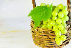 Green grape and leaves in basket on wooden table with copy space Stock Image