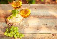 Green grape and two glasses of white wine in the vineyard Royalty Free Stock Images
