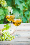 Green grape and two glasses of white wine in the vineyard Stock Photos