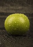 Green grapefruit Stock Image