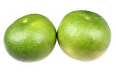 Green grapefruit sweetie Royalty Free Stock Photo