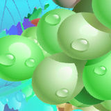 Green grapes. Beautiful large green grapes, illustration Stock Photos