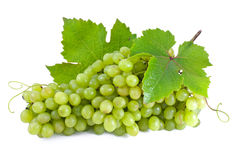 Green grapes. Stock Photos
