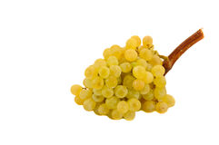 Green grapes. Over a white background Royalty Free Stock Photography