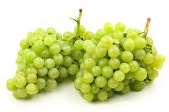 Green grapes Royalty Free Stock Image